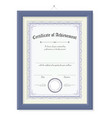 vertical certificate of achievement on wood frame vector image