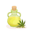 bottle of fresh oil and green hemp leaf healthy vector image vector image