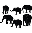 elephants collection vector image vector image