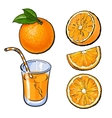 Oranges and a glass of freshly squeezed juice vector image vector image