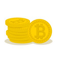 pile of golden bitcoins cryptocurrency coins in vector image