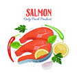 red fish salmon pieces with vector image