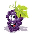 wine grape cartoon vector image vector image