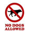 no dog allowed sign vector image