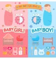 Baby infographic vector image