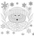brutal bear in hat flannel shirt in entangle vector image vector image