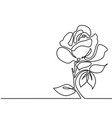 drawing of beautiful flower vector image vector image