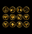 golden horoscope zodiac signs astrology vector image