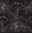 peony rose flowers seamless pattern vector image vector image