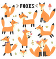 set cute foxes great for children and kids des vector image vector image
