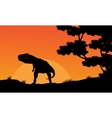 Silhouette of Tyrannosaurus at the sunset scenery vector image