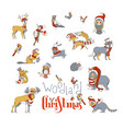 woodland animals christmas set vector image