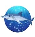 an evil shark sword vector image