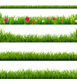 big set green grass and flowers borders vector image vector image