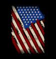 my flag - american flag - usa flag vector image vector image