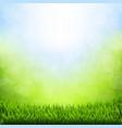 spring bokeh with grass border vector image