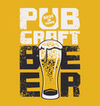 banner for a pub with best craft beer in town vector image
