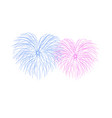 beautiful heart-fireworks couple romantic salute vector image