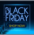 black friday sale design template with noen vector image