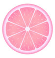 citrus product fresh fruit vector image