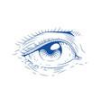 eye vintage engraving vector image