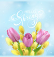 hello spring card with tulips and willow vector image vector image