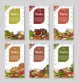 nuts and seeds collection hand drawn elements vector image