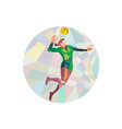 Volleyball Player Spiking Ball Jumping Low Polygon vector image vector image