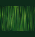 abstract striped grass pattern vector image vector image