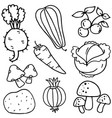 doodle of vegetables vector image vector image