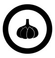 garlic black icon in circle isolated vector image vector image