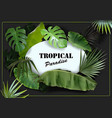 green tropical leaves background vector image