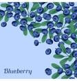 Nature background design with blueberries vector image