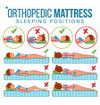 orthopedic mattress curvature of human vector image