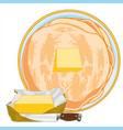 pancakes on plate and cream butter vector image vector image