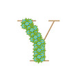 wooden leaves letter y vector image vector image