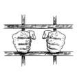 artistic drawing hands prisoner in prison vector image
