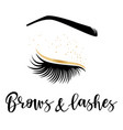 brows and lashes gold logo vector image vector image