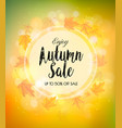 fall autumn colorful sale background vector image vector image