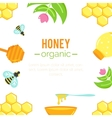 Honey background Natural organic elements vector image