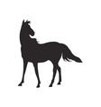 Horse silhouette contour vector image