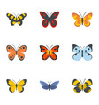 night butterfly icons set flat style vector image vector image