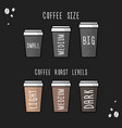poster coffee cup size and coffee roast levels vector image