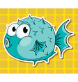 Puffer fish vector image vector image