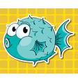 Puffer fish vector image