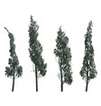 set sketches of trees isolated on white background vector image vector image