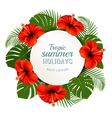 Tropical leaves and flowers with a summer holidays vector image vector image