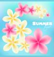 summer time poster background with bright tropical vector image