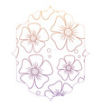 beautiful flowers design vector image vector image