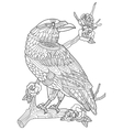 Crow bird coloring book for adults vector image